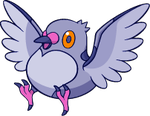 Shiny Pidove : DW Art by Muums