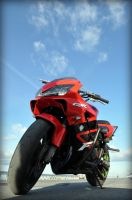 Stunt shots - 5 - Honda CBR by shaaaadow