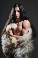 Hair fur and muscles by vishstudio