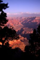 Grand Canyon III by AletheaDo
