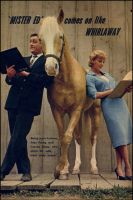 Alan Young,Mr.Ed and Connie Hines by slr1238
