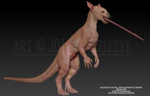 Raczoon's Critter - Skin texture by LeccathuFurvicael