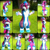 Sparkle Alex is Now A Fullsuit by AlexDachshund