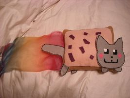 Nyan Cat Plushie by NinLuvs-SHM