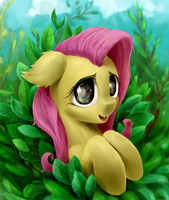 Fluttershy by RallerAE