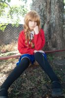 Taiga Aisaka Cosplay by MaryAlfaro