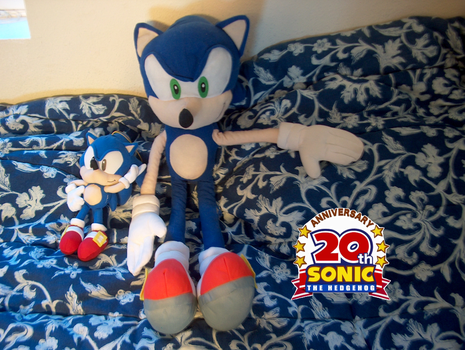 Sonic 20th Anniversary by DTWX