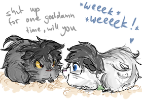 John + Karkat: Be Guinea Pigs. by Danuschka