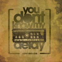 you dont know my delay poster by sounddecor