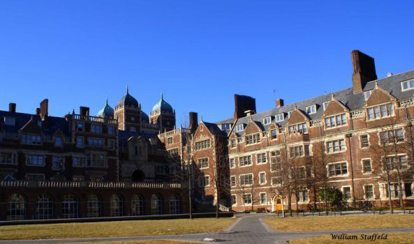 Fall in The Quad by yaseacabo