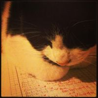 ~Enough Homework, Go To Bed~ by Belynx16