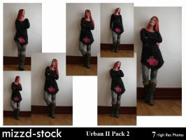 Urban Series II Pack 2 by mizzd-stock