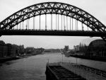 Newcastle 3 by horsy1050