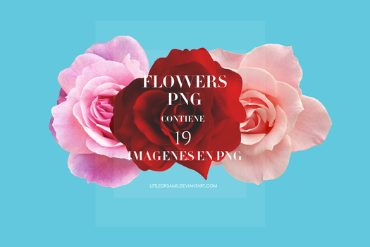 FLOWERS PACK PNG by LittleDr3ams