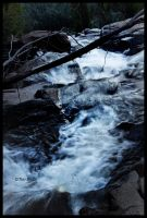 And the river cried by Schism-Photography