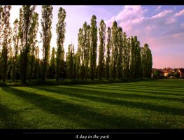 A day in the park by JoInnovate