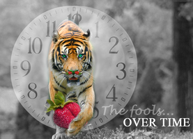 The Fools Over Time by SamanthaLi