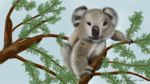 Lone Koala by Faircloth-DigiTalArt