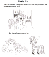 Pinkie Pie, the racist by Assassino01