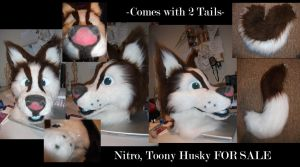 Toony Husky- SOLD~ by Saixpuppy222