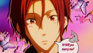 Rin proposes to you! by xClerithFan1x