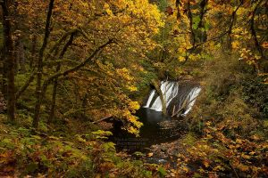 Waterfall - Lower North Falls in Autumn by La-Vita-a-Bella