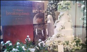breaking dawn wedding cake by Allie06