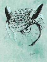 Another Owl - Teal version by Deviant-Mizu