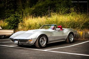 silver Corvette C3 by AmericanMuscle