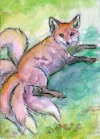 Fox Dapple ACEO by Stormslegacy
