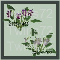 Flower Pack I by Twins72-Stocks
