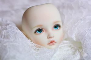 Elih Faceup -- Iplehouse Elin by fadeddreamss