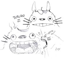 Totoro by Angy89