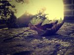 first leave of autumn by supermsive