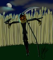 An ordinary scarecrow. Really. by gianenci