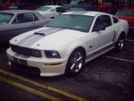 05-08 Shelby Gt by NationalMind