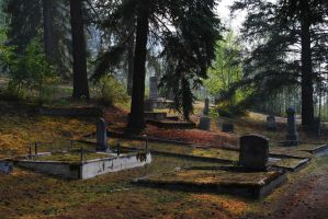 spooky and silent as the grave by EvanHodsonGallery