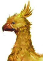 Chocobo by jeffchendesigns