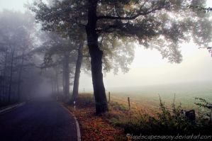 Autumn feelings no.57 by landscapesaxony