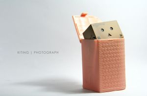 Danbo in the basket by kitinggiling