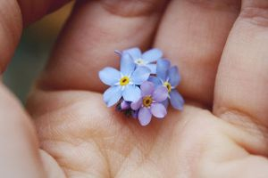 Hold you in my hands by juliagolden