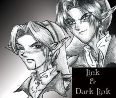 Link and Dark Link by Celes-Silvertears