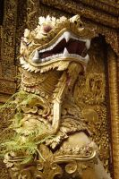 Golden Dragon by onelook