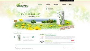 Naturex Website Design by grafiket