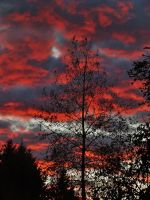 Fire clouds by lucium55