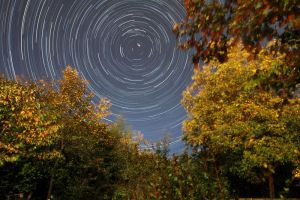 backyard startrails by neronin