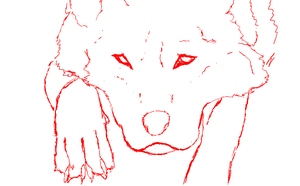 Wolf WIP on iscribble by forgetSanity