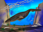 baby whale little fish by omagrandmother