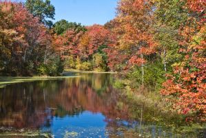 Acton pond by muffet1