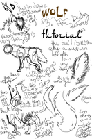 KD's how to draw a wolf tutorial number 3 by kitoridragoness